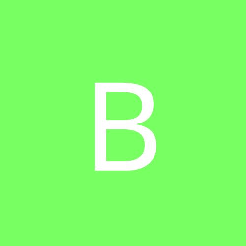 brunobaco