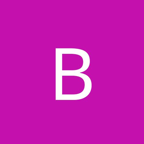 Bractus